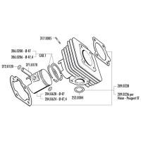 Cilinder Pakkingset Polini Sport 70cc voor Honda Lead 50, SH 50, Peugeot SC Metropolis
