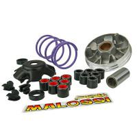 Vario Malossi Multivar 2000 MHR Team voor Piaggio