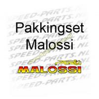 Pakkingset Malossi - Gilera & Piaggio 125 / 180cc 2-Takt