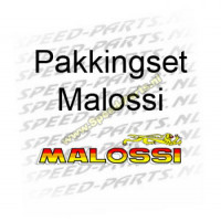 Pakkingset Malossi - Minarelli AM6 40mm 50cc