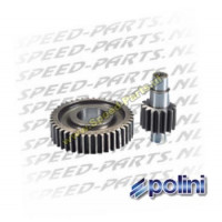 Overbrenging Polini - Secundair - 14/40 - Suzuki Adress